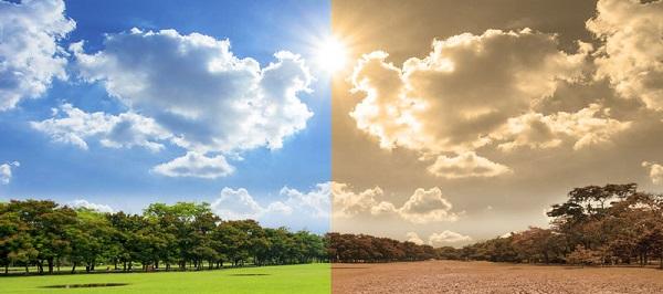 ClimateChange-full-800×600